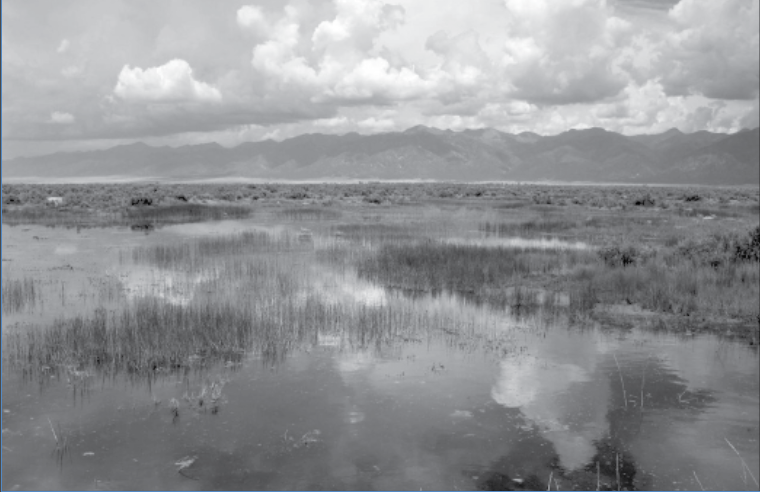 Baca Wildlife & Monte Vista Wildlife Refuge water tested as part of Endocrine Disruption Study