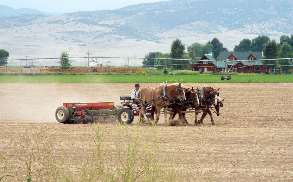 Preparing a field in the San Luis Valley for planting hay.