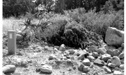 Camino Baca Grande restoration project