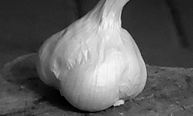 There's No Such Thing  As A Weed: Garlic is great!